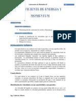COEFICIENTE DE ENERGIA Y MOMENTUM