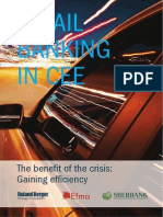 Retail Banking in CEE - The Benefit of the Crisis_ Gaining Efficiency
