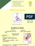 Estatica Fetal