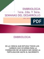 1 Clase, Embriologia Semana 1 a La 3