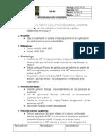 Programa Auditoría