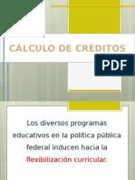 CÁLCULO DE CRÉDITOS