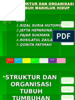 struktur dan organisasi tubuh makhluk hidup