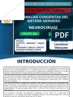 Malformaciones Congénitas Del Sistema Nervioso - Grupo b6 (1)
