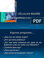 Seminario Celulas Madre Version Web