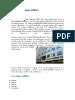 REPORT OF SEBL.docx