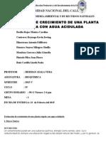 Evaluacion de Crecimiento de Una Planta Regada Con Agua Acidulada Corregido