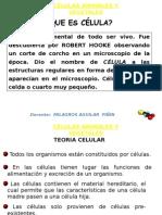 5. LA CELULA-funciones de Organelos