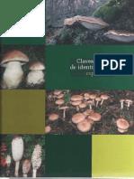 Hongos - Clave de Identificación de Especies