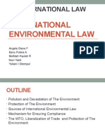 Group 7 International Environmental Law