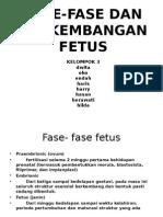 Fase-fase Dan Perkembangan Fetus