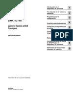 WCF08ProAgentesES.pdf