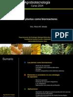 Clase 16 2014 Las plantas como biorreactores.pdf