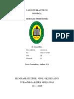 Laporan Praktikum Hidrolisis Amilum