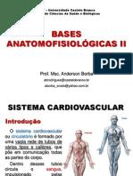 Bases Anatomofisiológicas II