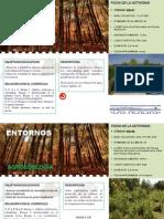 def- ENTORNOS 2015-16 Secundaria Bach FP.pdf