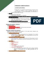 1.1 Consulta Ginecológica