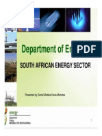 Department of Energy - South African Energy Sector