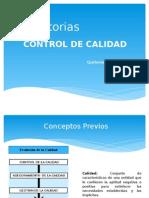 Auditorias Control de Calidad - Priscila