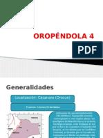OROPÉNDOLA 4