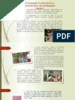 10 idei ale pedagogiei Waldorf
