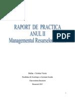Raport de Practica Visoiu Stefan Cristian - Master MRU - An 2 - 2015