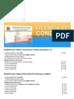 Licencia de Conducir _ Instituto Nacional de Transporte Terrestre