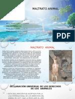 Diapositivas Del Maltrato Animal