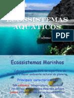 Biomas - Ecossistemas Aquáticos