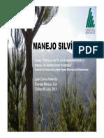 Manejo Silvicola Forestal Mininco Chillan Araucania