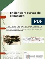 Eficiencia y Curvas de Expansión