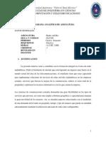 Programa analítico de la materia Redes Ad Hoc ELC208
