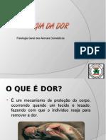 fisiologiadador-120515112409-phpapp02.ppt