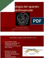 Embriologia Del AP Cardiovascular