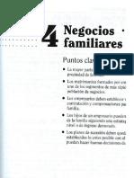 Negocios Familiares - 1