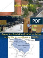 Fiebre_amarilla_presentacion-Dr_Castro.ppt