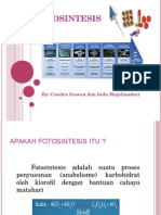 Fotosintesis 2.ppt