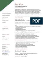 Marketing Executive CV Template Sample