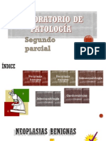2do Parcial Lab de Pato - Presentacion