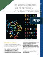 Cap 8 Seccion Cromosomas Conceptos de Genetica. Klug