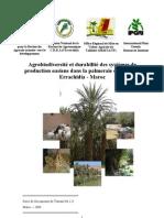 Rapport Maroc 20041