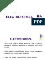 Lp 5 Electroforeza
