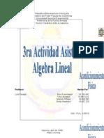 Actividad 3 Matriz Inversa grupal3[1]