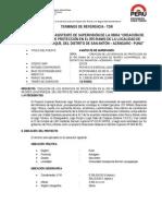 TDR ASISTENTE SUPERVISION LACAYPARQUE.doc