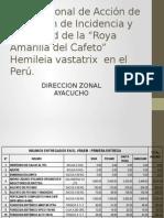 Plan Nacional de Acción de Reducción de Incidencia ROYA AMARILLA