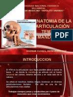 Anatomia  de la Articulación Temporo Mandibular