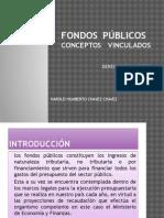 129227232-Fondos-Publicos-Conceptos-Vinculados-Harorl-Chavez.pptx
