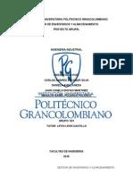 Proyecto Grupal proyecto gestion de inventarios (1) Completo (1)