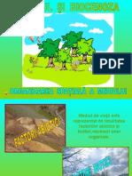 Biotopul Si Biocenoza