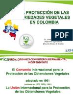 Conceptos generales en la regulación para derechos de obtentor.pdf